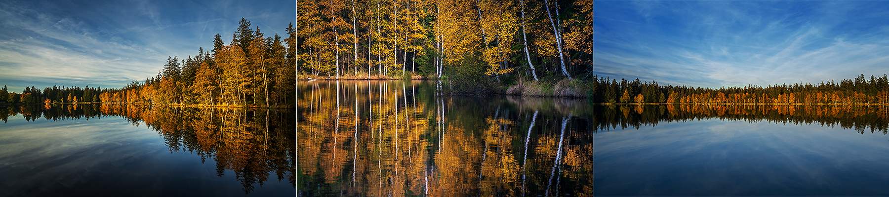Kladský rybník